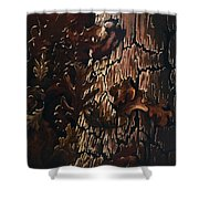 Eruption Shower Curtain
