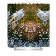 Faces In Water II Shower Curtain