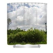 Falcon Nest 3  Shower Curtain