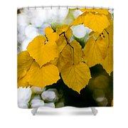 Fall Arrives Shower Curtain