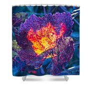 Fall Flame Shower Curtain