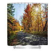 Fall Forest Road Shower Curtain