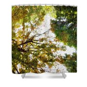 Fall Iv Shower Curtain