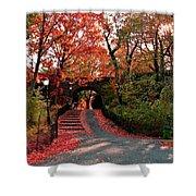 Fall Path Shower Curtain