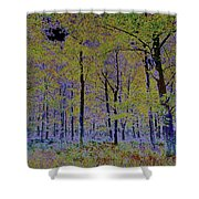 Fantasy Forest Art Shower Curtain
