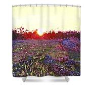 Farley Sunset Shower Curtain