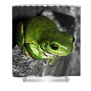 Fence Frog Shower Curtain