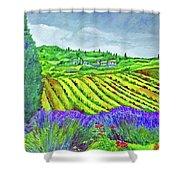 Fields At Dievole Shower Curtain
