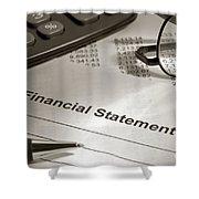 Financial Statement On My Desk Shower Curtain