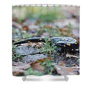 Fire Salamander Fog Droplets Shower Curtain