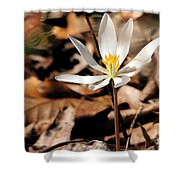 First Sign Of Spring 2 Shower Curtain