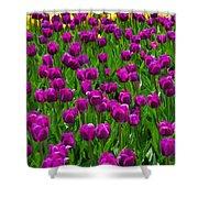 Floral Art Vi Shower Curtain