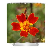 Floral Sunshine Shower Curtain
