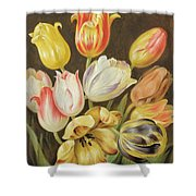 Flower Study Shower Curtain