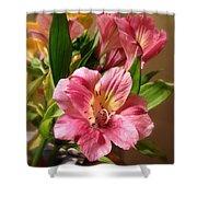 Flowers In Bloom Shower Curtain