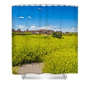 Flowers In The Badlands Shower Curtain