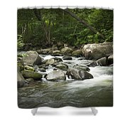 Flowing Stream In Vermont Shower Curtain