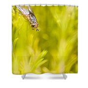 Fly Insect In Amongst A Flurry Of Yellow Leaves Shower Curtain