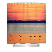 Flying North - Wildlife Lighter Shower Curtain
