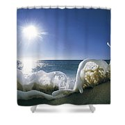 Foam Inertia Shower Curtain