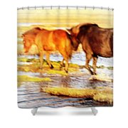 Our Whole Life We Just Follow The Stream  Shower Curtain