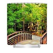 Folsom Bridge At Furnace Creek Shower Curtain