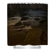 Forest Creek Shower Curtain