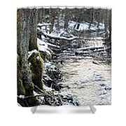 Forest Lights Shower Curtain