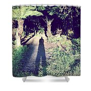 Forest Shadow Shower Curtain by Les Cunliffe