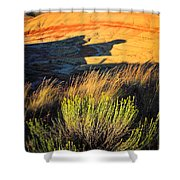 Fossil Beds And Grass Shower Curtain