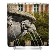 Fountain - Place Des Vosges Shower Curtain