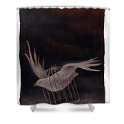 Freedom-2 Shower Curtain