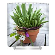 Green Beans In Pot Shower Curtain