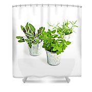 Fresh Herbs Shower Curtain