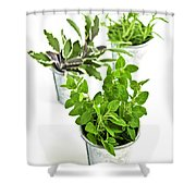 Fresh Herbs In Pots Shower Curtain