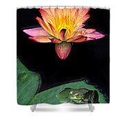 Frog And Waterlily Shower Curtain