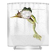 Frog On Waterline Shower Curtain