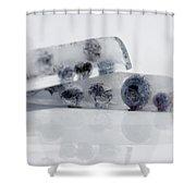 Frosty Fruit Shower Curtain