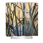 Frozen Raindrops Impasto Shower Curtain