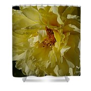 Garden Lady Shower Curtain