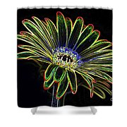 Gerbera Glow 1 Shower Curtain