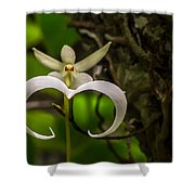 Ghost Orchid Shower Curtain