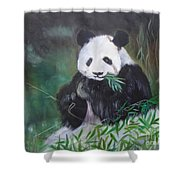 Giant Panda 1 Shower Curtain