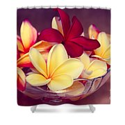 Gifts Of The Heart Shower Curtain