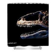 Giganotosaurus Skull 3 Shower Curtain