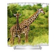 Mom Giraffe And Little Joey Shower Curtain