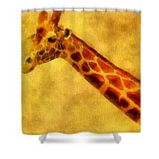 Giraffe Painting Shower Curtain by Dan Sproul