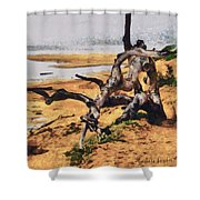 Gnarly Tree Shower Curtain by Barbara Snyder
