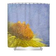 Golden Everlasting Daisy Shower Curtain
