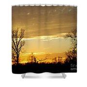 Golden Sunset 61 Shower Curtain